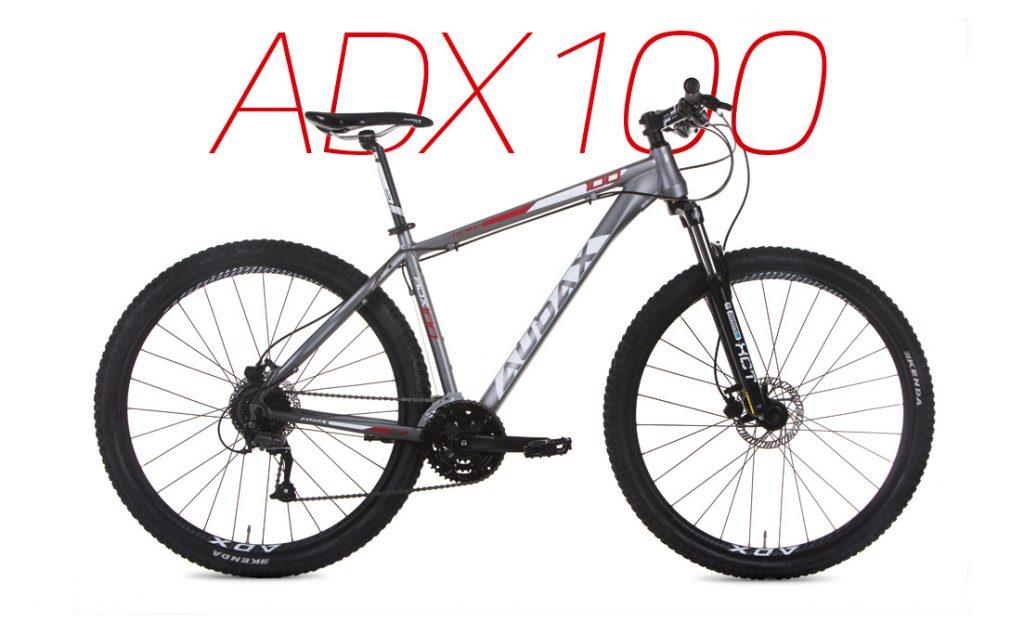Modelo de entrada Audax ADX 100
